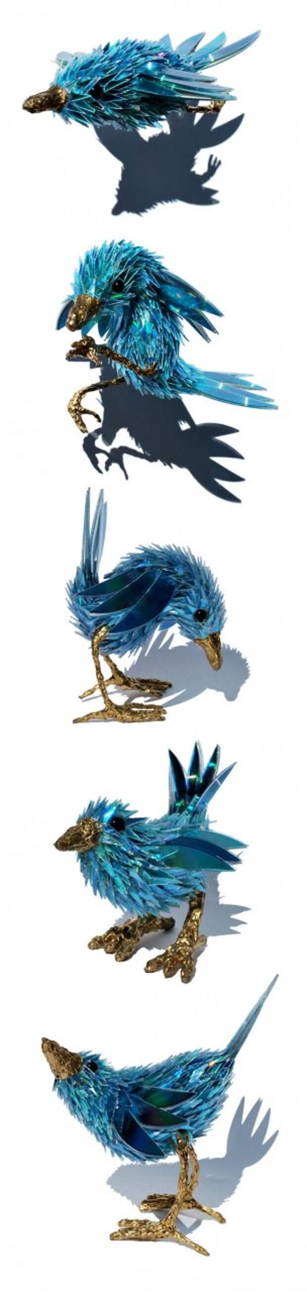 blue_wren_series_by_seanavery-d387oc9.jpg