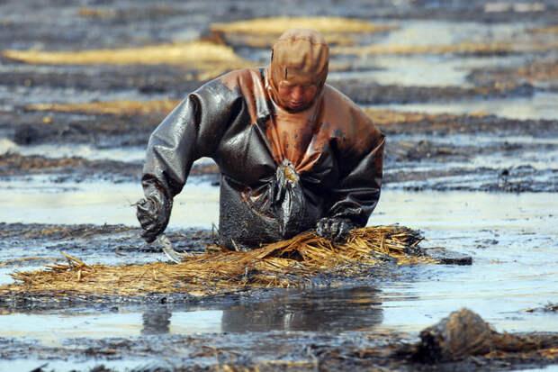 8. Рабочий пытается очистить воду от нефти, Далянь, Ляонин загрязнение, китай, экология