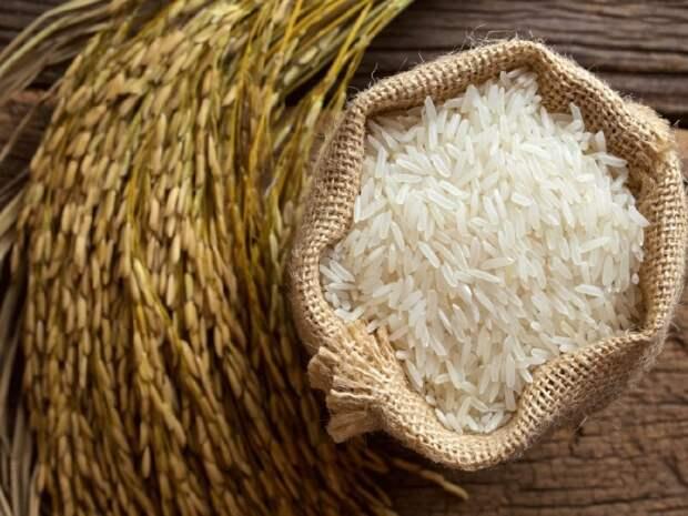 Рис. \ Фото: zerno-ua.com.