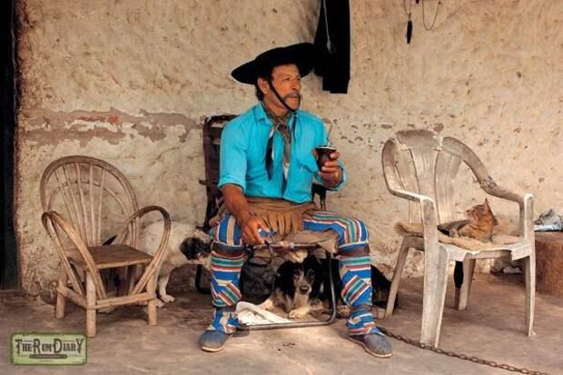 Любимый напиток Че Гевары: немного правды о мате