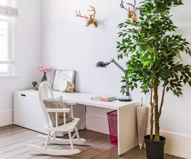 Растения, улучшающие самочувствие