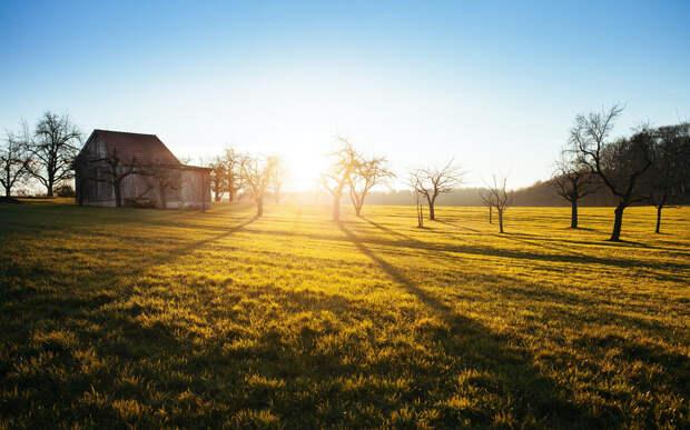 Как выбрать вид разрешенного использования земельного участка?