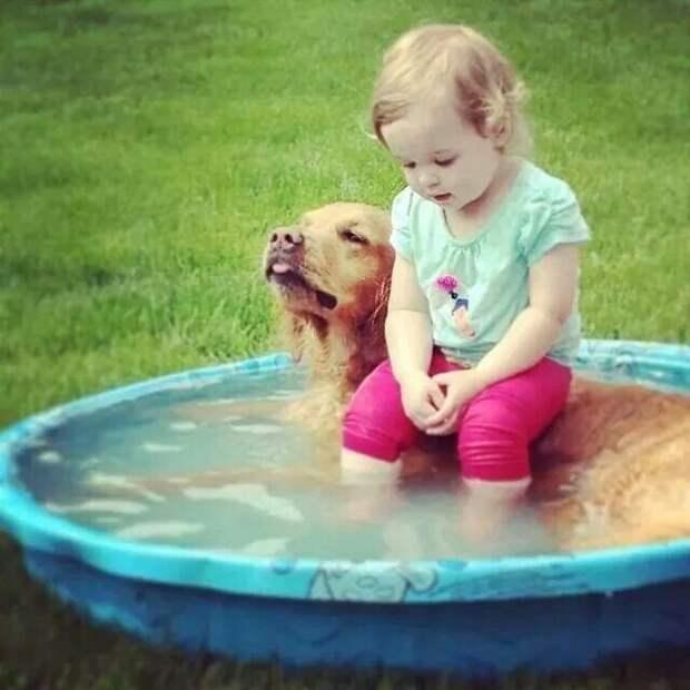 Няньки дети, дружба, животные, забота