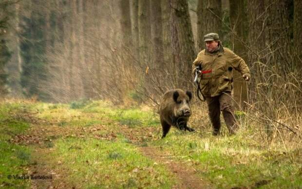 Случай на охоте... Улыбнемся)))