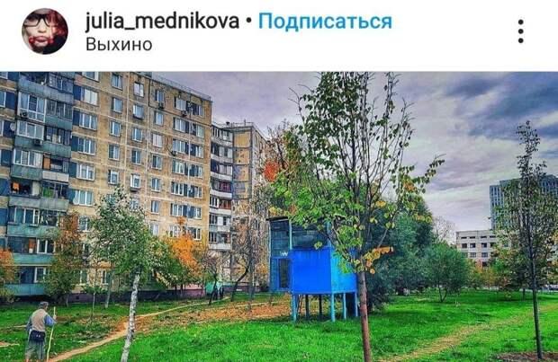Фото дня: птичий коттедж в Выхине-Жулебине