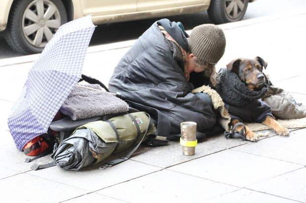 44. Бездомные в Берлине бездомный, любовь, собака