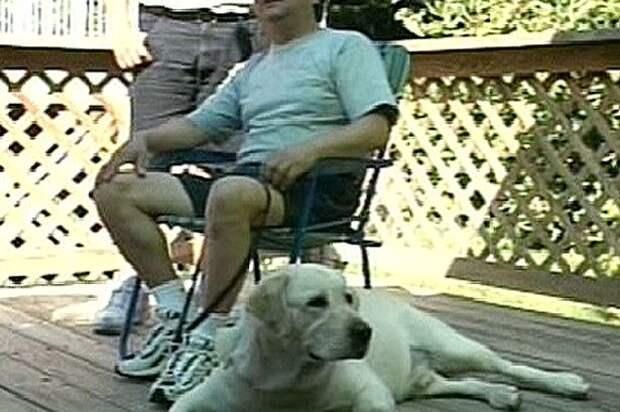 http://i1.mirror.co.uk/incoming/article4695354.ece/ALTERNATES/s615/Omar-Eduardo-Rivera-and-his-faithful-guide-dog.jpg