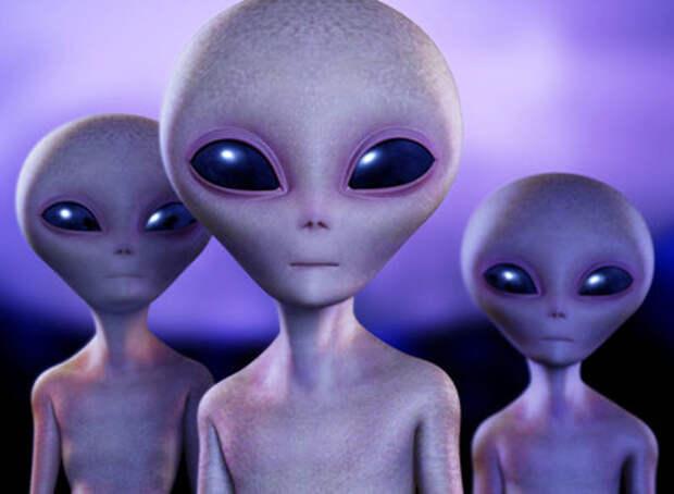 Как на самом деле выглядят инопланетяне?