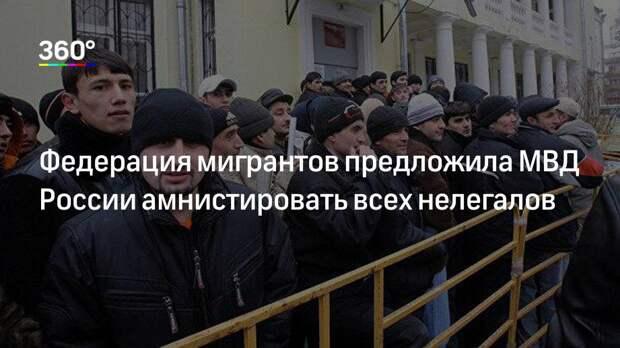 Федерация мигрантов предложила МВД России амнистировать всех нелегалов