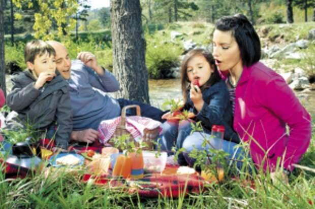Какую еду взять с собой на пикник?