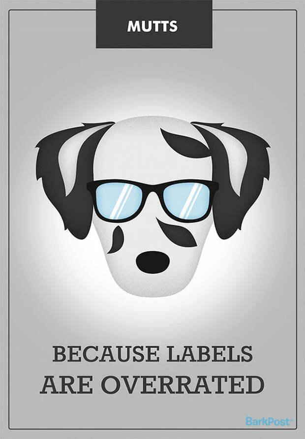 12 самых честных девизов, которые должны бы быть у собачьих пород