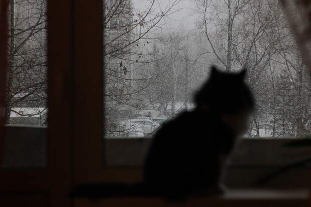 Весна откладывается: ближайшей ночью в Удмуртии похолодает до -20 градусов