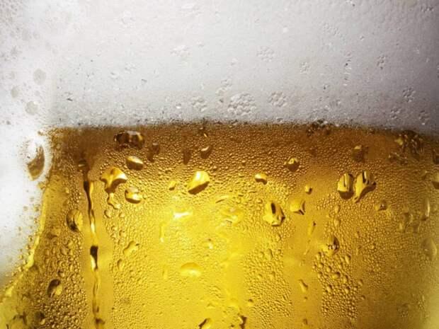 Пиво укрепляет кости еда, здоровье, пиво, прикол, факты