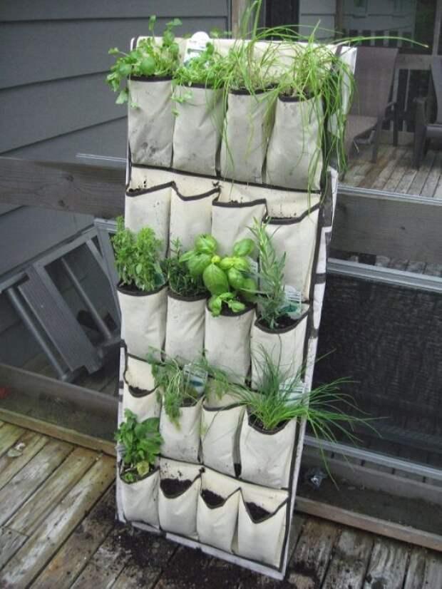 Вертикальные клумбы: актуальные идеи для сада