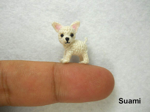 White Chihuahua Dog - Made to Order