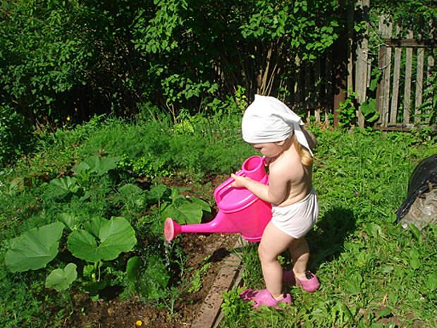 Поливаем огород.Он ведь тоже воду пьет. Помогайка. Фотоконку…