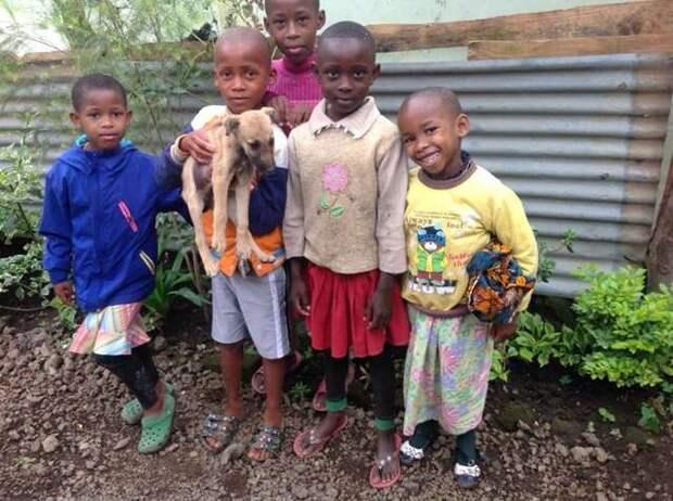 «Щенок — не пряник, выбросьте его!» Но дети отказались предать малыша и придумали план спасения!