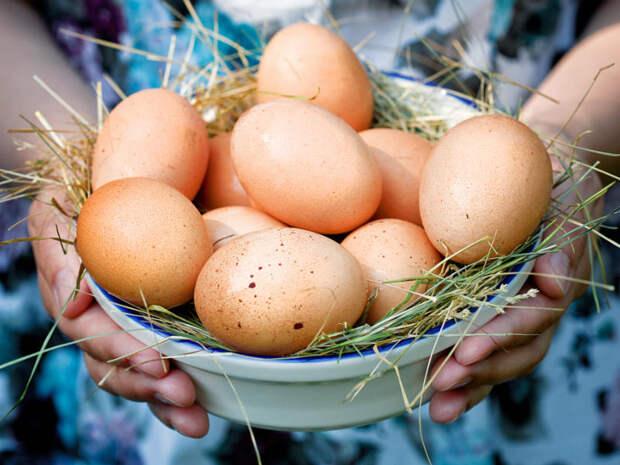 Яйца куриные деревенские, Вадим, 10 ток-50 руб...всегда свежие. - РублЁк