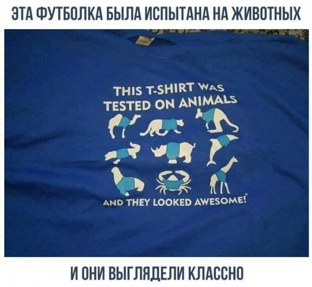 Об испытании на животных
