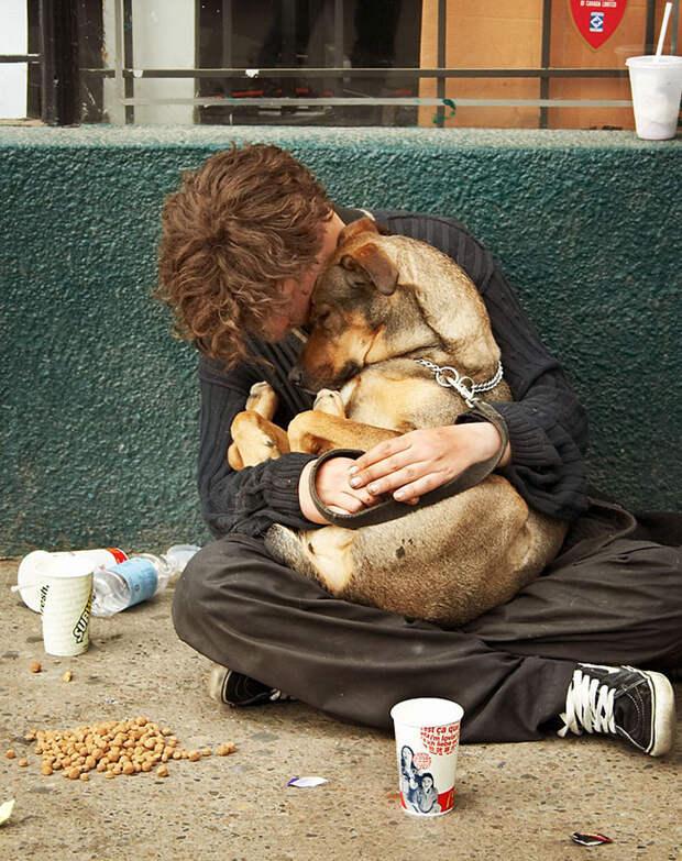 13. Настоящие друзья бездомный, любовь, собака
