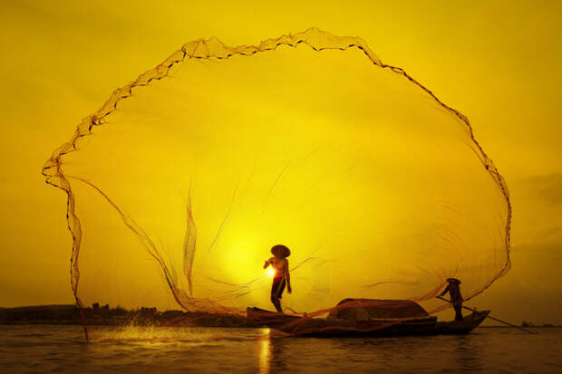 15 финалистов конкурса Smithsonian Annual Photo Contest