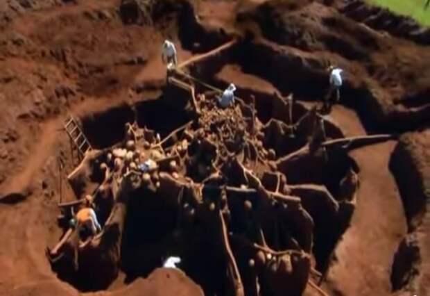 Учёные раскопали колоссальный подземный город муравьёв - видео-12
