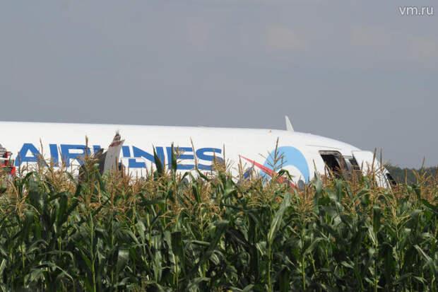 Пассажиры аварийно севшего на кукурузное поле самолета получили компенсации