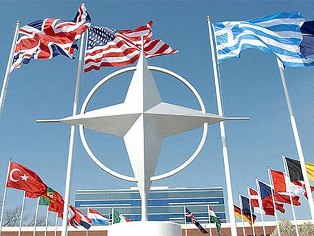 Турции не место в НАТО – американский конгрессмен