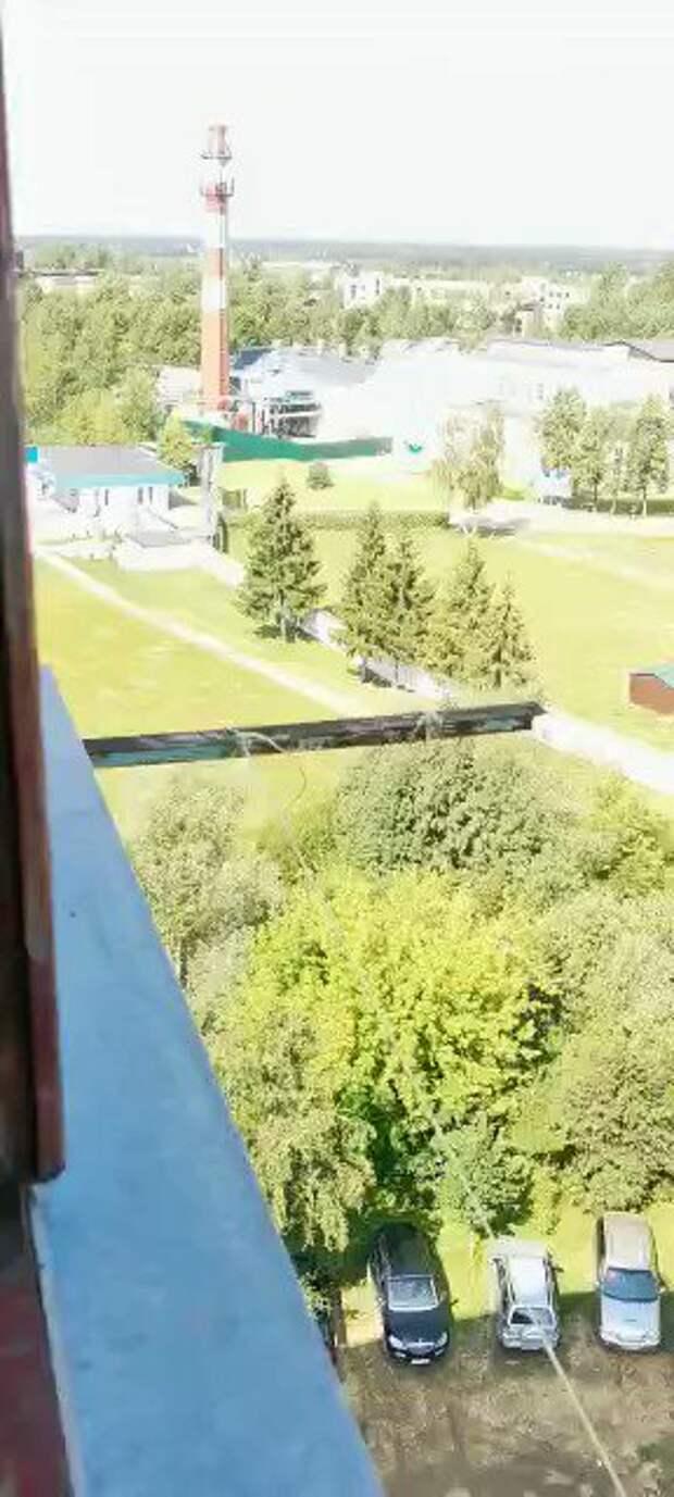 В Подмосковье потерпел крушение самолет. Момент падения сняли на видео