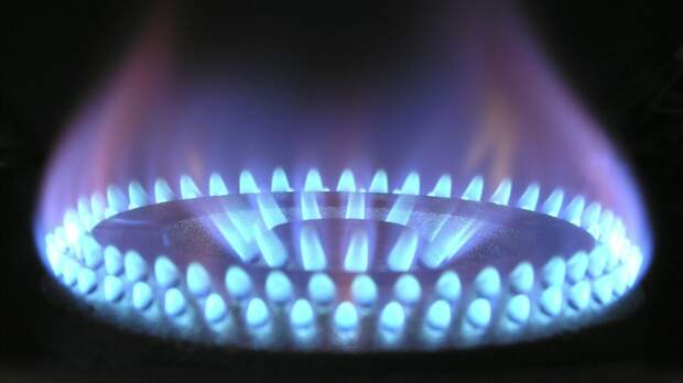 Экономист назвал «параноидальным страхом» опасения Украины из-за транзита газа