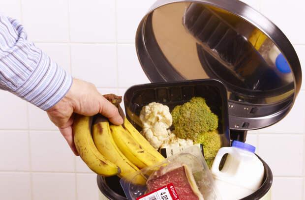 Как перестать выбрасывать продукты и научиться использовать морозилку не только для мяса. Часть 3.
