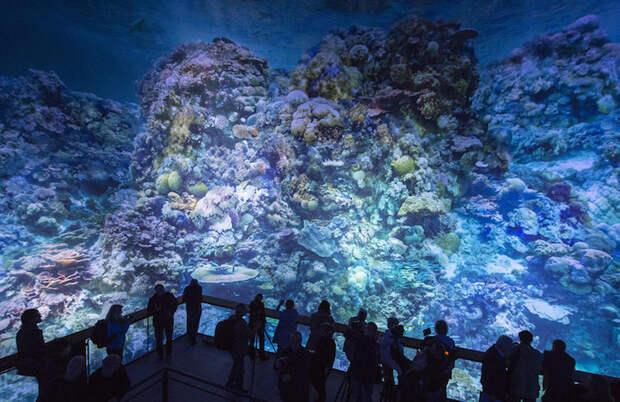 Полномасштабная панорама Большого Барьерного рифа