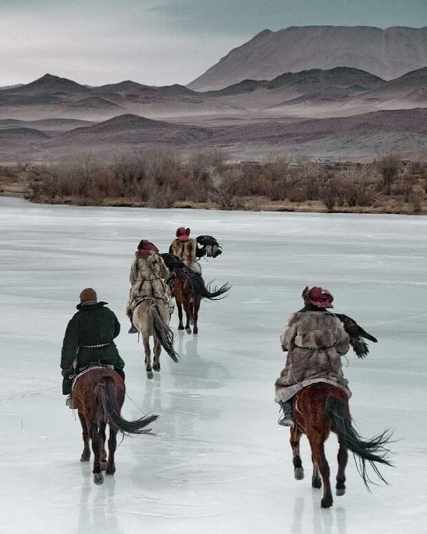 Казахи в Монголии: охота с беркутами (25 фото + видео)