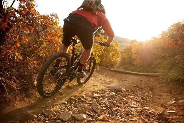 На что обратить внимание при выборе велосипеда