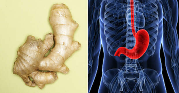 Вот 10 целебных продуктов, которые идеально подходят для разных внутренних органов