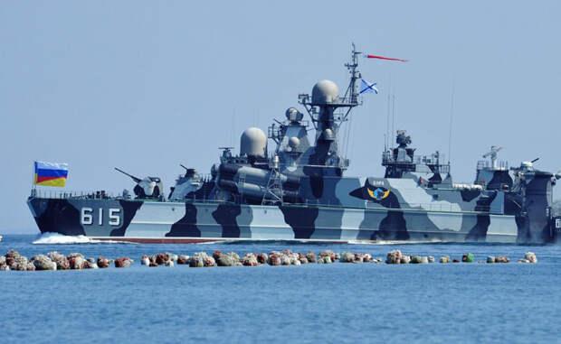 Бора Первый в своем роде ракетный корабль на воздушной подушке. Вооружен восемью ракетами класса «Москит» и двадцатью зенитными ракетами. Экипаж судна насчитывает 68 человек. Крейсерская скорость «Бора» — 100 км/ч.