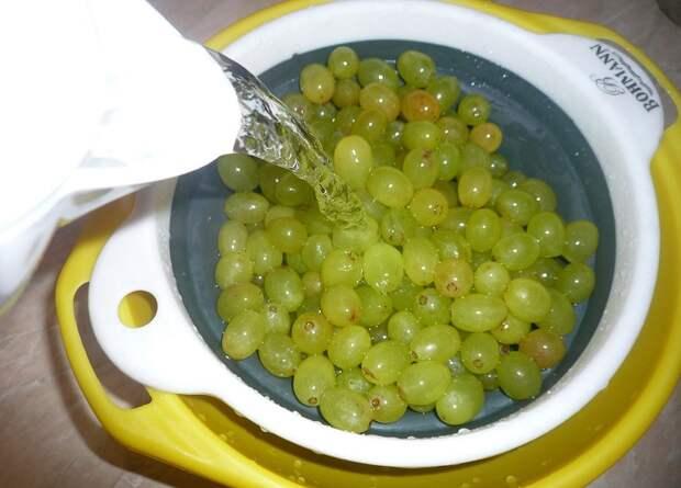 готовить виноградное варенье