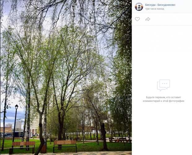 Фото дня: парк имени Федорова приобретает новый вид