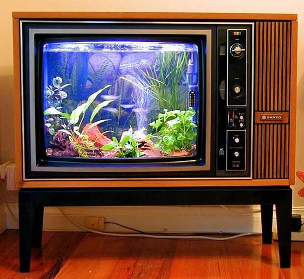 аквариум из телевизора