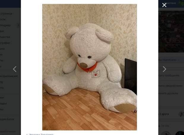 Медведь обрел новую хозяйку у метро «Некрасовка»