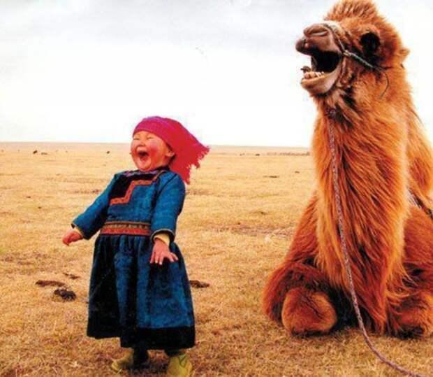 Украина требует от Монголии денег за геноцид во времена хана Батыя   даже не смешно, монголия, политика, украина