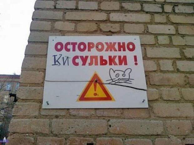 http://img.lady.ru/data/aphoto/e/8/a/54432/main/3a7beb5a6d97bb11218d809a1b19e2a7.jpg