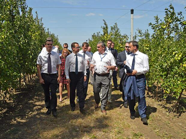 Медведев позвал молодежь на заводы и пашни