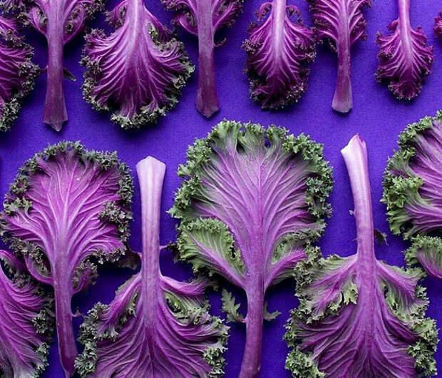 Яркая осенняя подборка из Инстаграм: не будь овощем, будь фруктом!