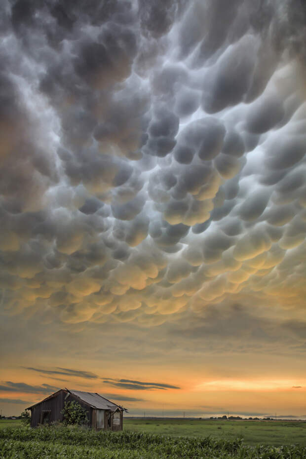 Лучшие фотографии чарующей природы на конкурсе 2015 It's Amazing Out There Photo Contest