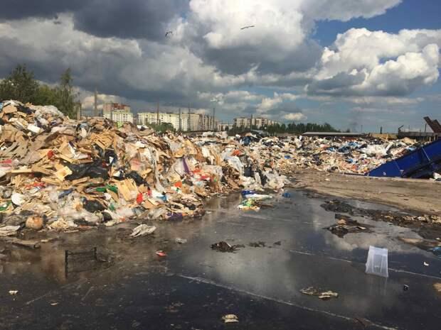 Мусорный полигон «Ядрово» переехал в Рузу: жители пытаются спасти «жемчужину Подмосковья»
