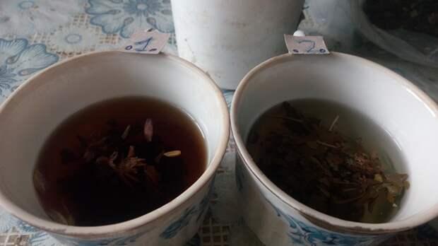 Мой копорский  и другие чаи