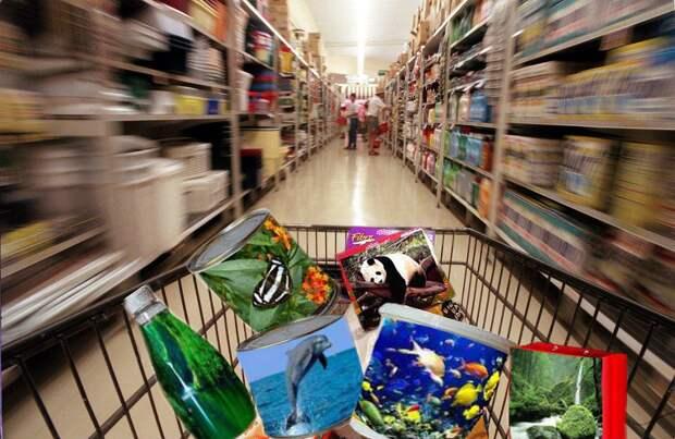 Безопасность покупателя в рознице: что надо знать лично вам магазин, покупатель