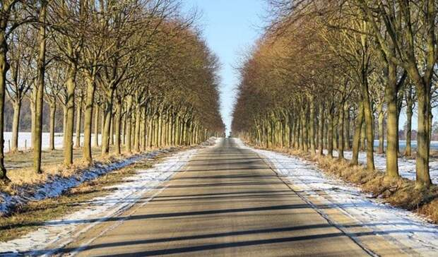 Температурные качели до 20 градусов ожидаются в Ростове
