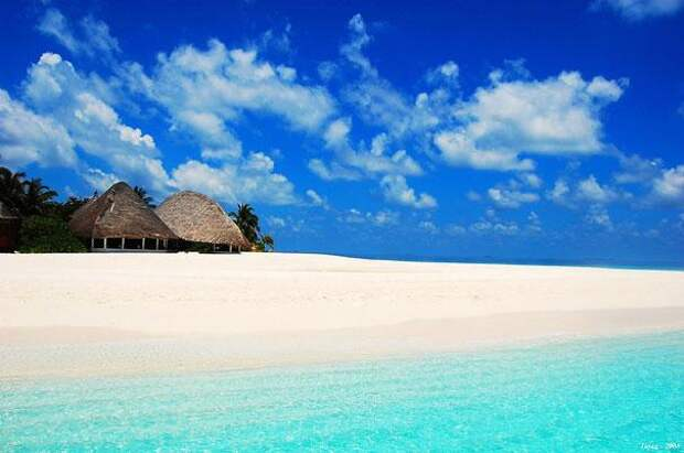 Мальдивские острова (3)